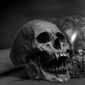 Bague crâne grise