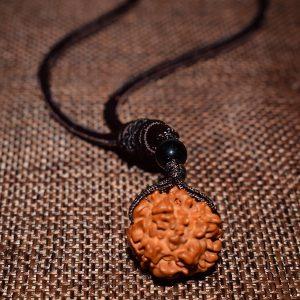 Collier graine de rudraksha